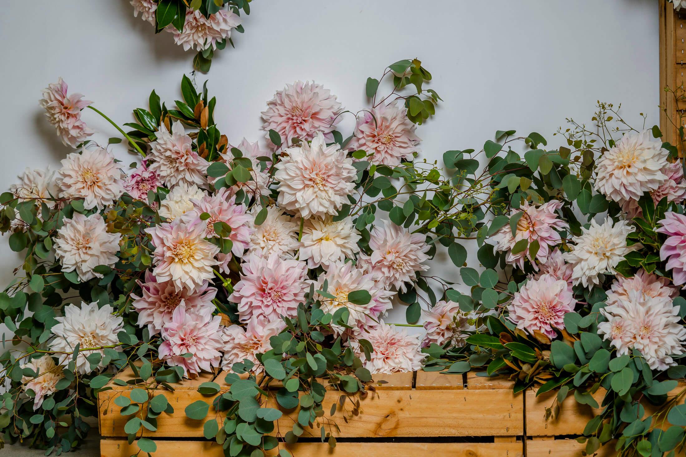 florist Beenleigh